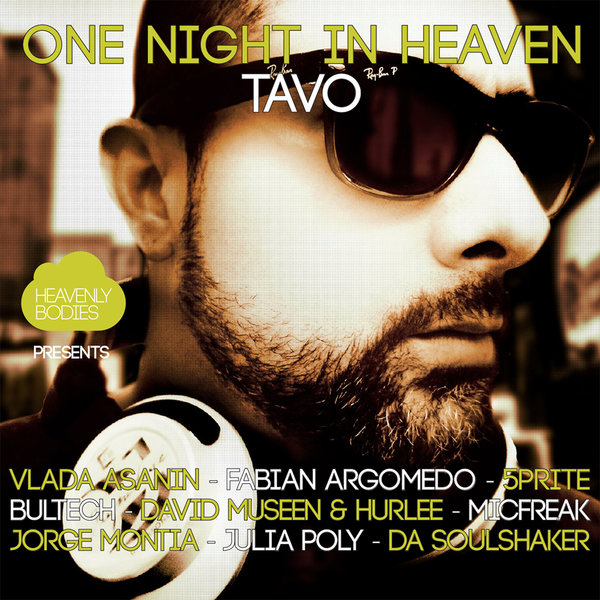 One Night In Heaven, Vol. 12Various Artists