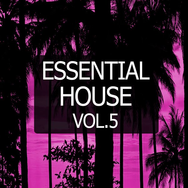 Various artists essential house vol 5 traxsource for Classic house traxsource